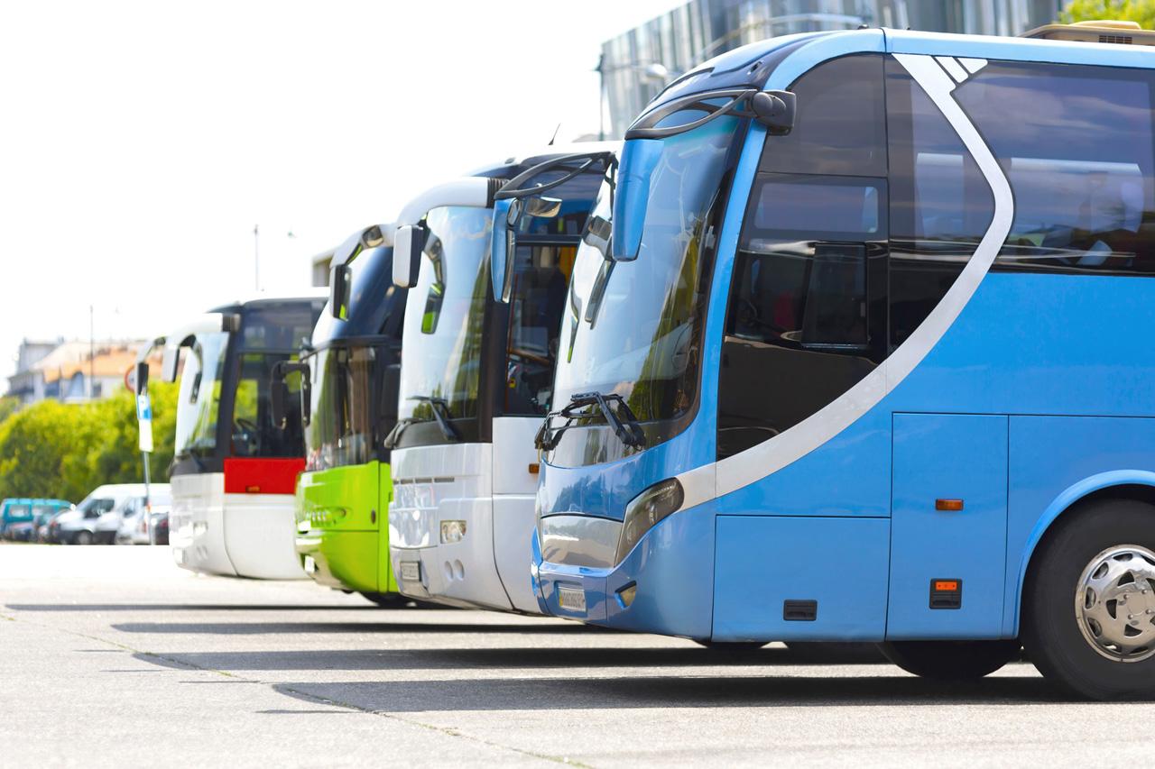 Международные пассажирские перевозки автобусами в беларусь пассажирские перевозки подчиняющиеся расписанию